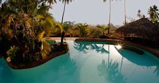 Image of Yogamagic Eco Resort