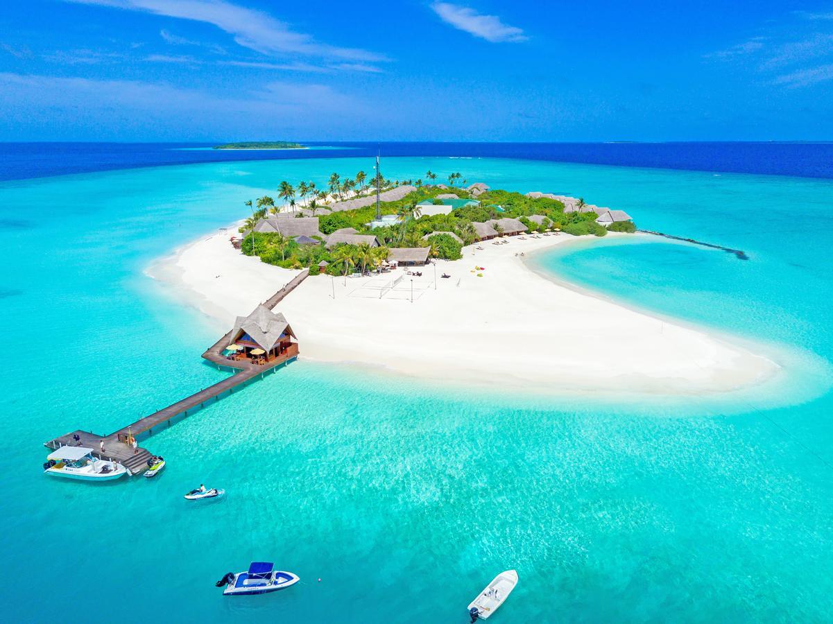 Image of Dhigufaru Island Resort