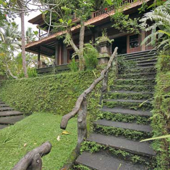 Image of Ubud