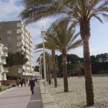 Image of Bon Aire Paguera Apartments