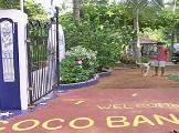 Image of Coco Bananas Bungalows