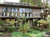 Image of Fern Paradise Hotel