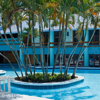 Image of Grand Paradise Playa Dorada Hotel