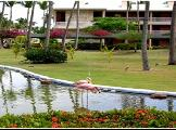 Image of Sirenis Cocotal Beach Resort Hotel