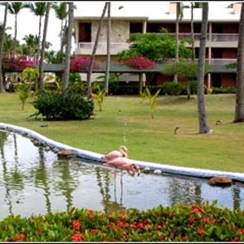 Image of Sirenis Cocotal Beach Resort Hotel